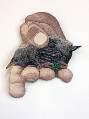 handvogeltjexxs
